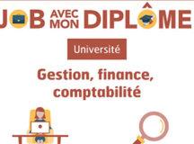 Jeunes diplômés en comptabilité : Emploi vs chômage