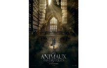 Cinéma : Les Animaux fantastiques